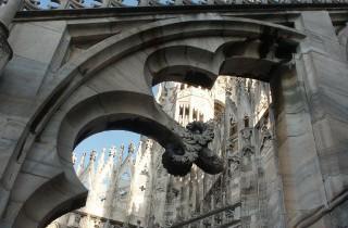 Nel Duomo di Milano